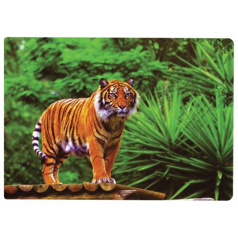 074303 Настольное покрытие для письма и творчества BRAUBERG размер А4, пластик, Тигр,