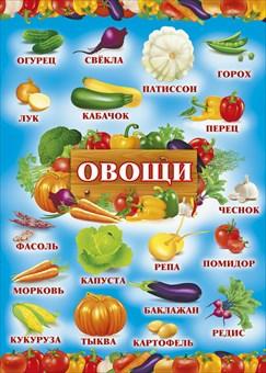 """035397 Мини-плакат""""Овощи"""""""