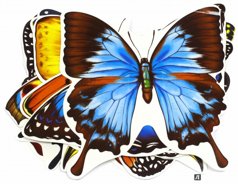 """067727 Набор на скотче """"Бабочки"""""""