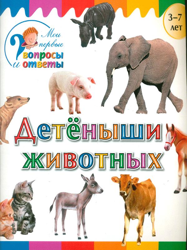 Мои первые вопросы и ответы. Детеныши животных. /Орехов.