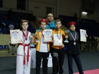 Новгородские тхэквондисты успешно выступили на «Кубке Смоленской крепости»